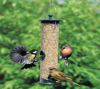 Bird feeders tables wild seed feed garden