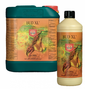 House and Garden Bud XL 1Ltr